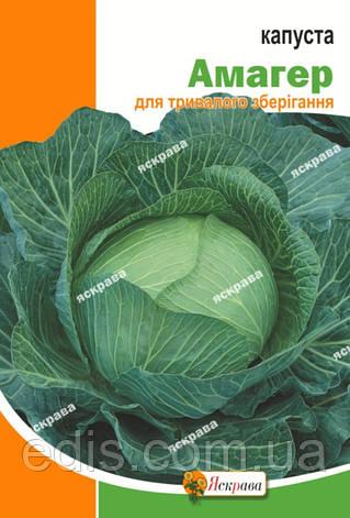 Капуста белокочанная Амагер 10 г, семена Яскрава, фото 2