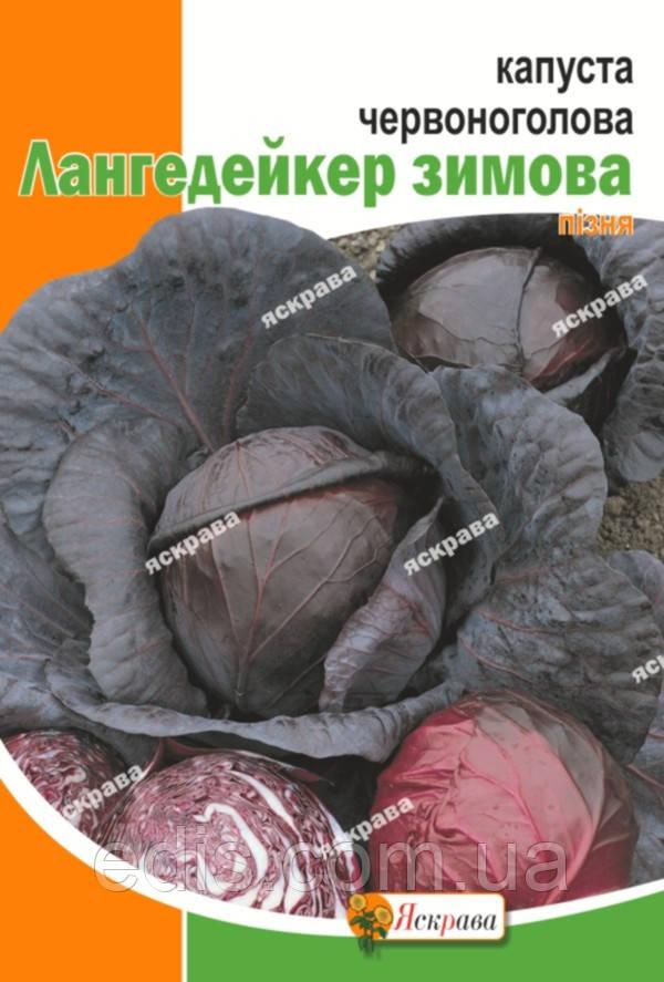 Капуста краснокачанная Лангедейкер 5 г, семена Яскрава