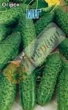 Огірок Міг 1 г, насіння Яскрава, фото 2