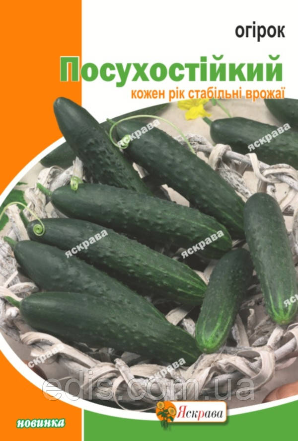 Огірок Посухостійкий 10 г, насіння Яскрава