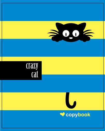"Блокнот Мицар В5 60арк, ""Crazy cat on dark blue"" 71998 Ч"