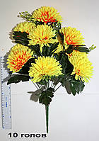 Хризантема 10 голов