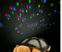 Черепаха Звездное Небо, музыкальная