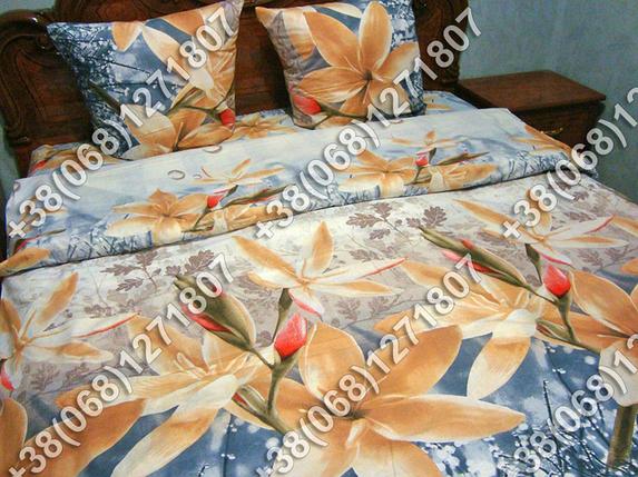 Постельное белье ранфорс - евро комплект (0724), фото 2