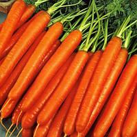 Морква Нантська 0,5 кг Rem seeds