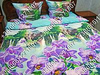 Постельное белье ранфорс - семейный комплект (0882)