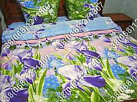 Постельное белье ранфорс - семейный комплект (0880)
