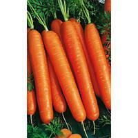 Морковь Флакке 0,5кг Rem seeds