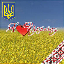 "Магнит ""Я люблю Україну"" 60х60 мм"