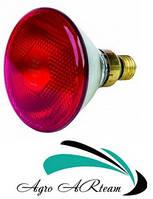 Лампа инфракрасная 150 Вт красная для обогрева животных