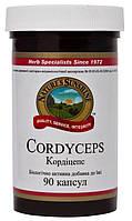 "БАД ""Cordyceps Кордицепс в капсулах ""-природным иммунокорректором (90капс.,США)"