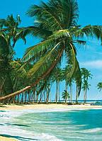 Фотообои бумажные на стену 183х254 см 4 листа: море, Тропический пляж  №315