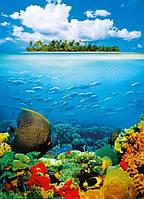Фотообои бумажные на стену 183х254 см 4 листа: Коралловый остров