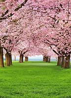 Фотообои бумажные на стену 183х254 см 4 листа:природа Вишневый сад