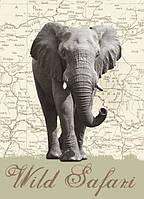Фотообои бумажные на стену 183х254 см 4 листа: Слон