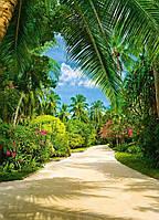 Фотообои бумажные на стену 183х254 см 4 листа: природа, Тропическая дорога  №438