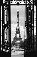 Фотообои бумажные на стену 115х175 см 1 лист: Париж, Вид из окна Эйфелевая башня