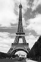 Фотообои бумажные на стену 115х175 см 1 лист: город Париж, Эйфелевая башня