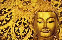 Фотообои бумажные на стену 115х175 см 1 лист: Чатучак Будда