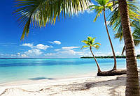 Фотообои флизелиновые на стену 366х254 см 8 листов: природа Карибское море  №954