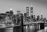 Фотообои флизелиновые на стену 366х254 см 8 листов: ночной город Манхэттен