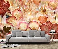 Фотообои флизелиновые на стену 366х254 см 8 листов: Высушеные цветы  №963