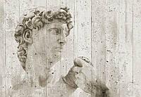 Фотообои флизелиновые на стену 366х254 см 8 листов: Уличное искусство Давид  №970