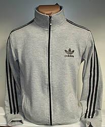 Мужская спортивная кофта светло-серого цвета с лампасами, на молнии