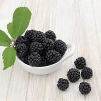 Ароматизатор  Boysenberry Flavor