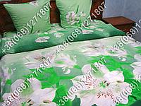 Постельное белье ранфорс - семейный комплект (0699)