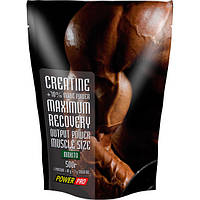 Creatine Maximum Recovery with flavour (500 g )