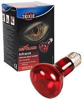 Лампа инфракрасная для террариума 100 W