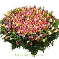 Корзина 501 разноцветный тюльпан