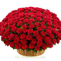 Корзина из цветов 301 красная роза