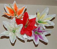 Головка лилии простая 5 цветов, фото 1