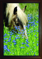 Схема для вышивания бисером на авторской канве лошадь