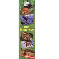 Набор закладок Мир животных Лунапак