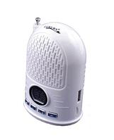 Радио Luxury T-07