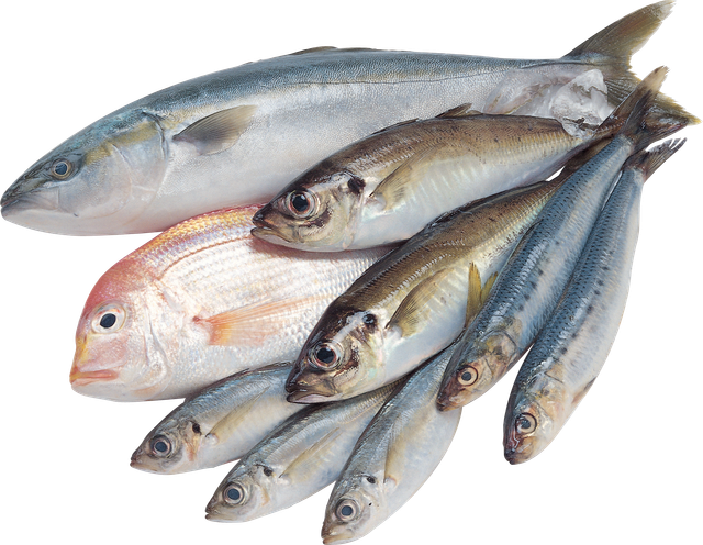 Таинственный британский рыболов за год побил все мыслимые рекорды