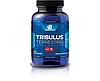BodyBuilding.com Tribulus 100 caps