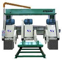 Многопильный станок портального типа 3TQ-100