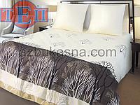 Комплект постельного белья 870 «Конго» ТМ ТЕП (Украина) бязь полуторный