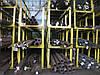 Трубы котельные 57х4 ТУ14-3-460 ст. 12Х1МФ