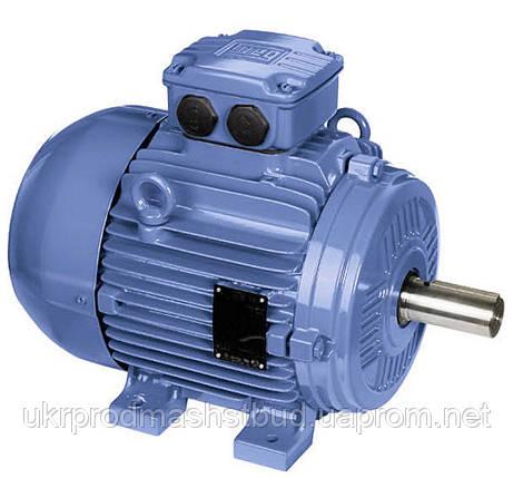 Электродвигатели складского хранения, фото 2