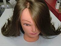 Болванка искусственная (парикмахерская учебная голова)шатен