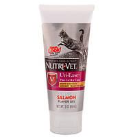 Nutri-Vet Uri-Ease НУТРИ-ВЕТ УРИ-ИЗИ витаминный комплекс для подкисления мочи котов, гель