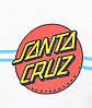 Футболка мужская стильная Santa Cruz Screaming Dot, фото 3