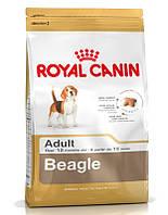 Сухий корм для собак  ROYAL CANIN Beagle adult 12 кг