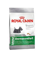 сухий корм для собак ROYAL CANIN Mini dermacomfort 10 кг