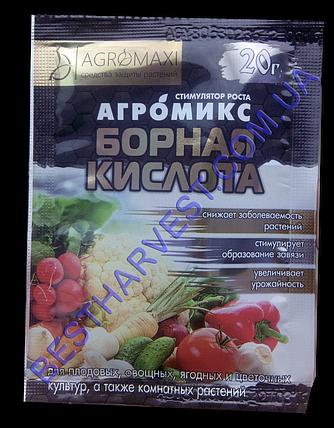 Борная кислота Агромикс 20г, фото 2